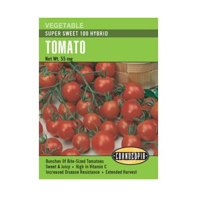 Tomato Super Sweet 100 Cherry Seeds: Toys & Games