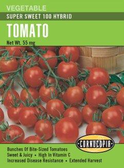 super 100 tomato - 2