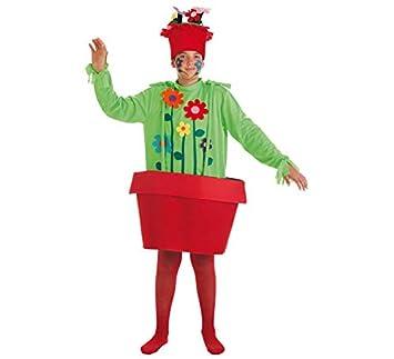 LLOPIS - Disfraz Infantil Maceta niño t-3: Amazon.es: Juguetes y ...