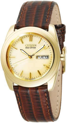 Citizen Men's BM8002-01P Eco-Drive Gold-Tone Leather Watch