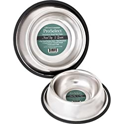 No-Tip Non-Skid Stainless Steel Dog Bowl Size: 16 Ounces