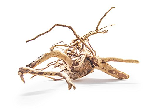 Aquatic Arts 1 Medium Sized Piece of Spider Wood aka Azalea Wood Natural Aquarium Driftwood, 9-12'' by Aquatic Arts