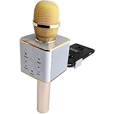 templeton-3-in-1-wireless-karaoke