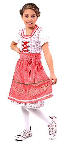 Adorable and Authentic German 3 PCS. Dirndl, Summer, Spring Dress Outfit for Girls in Red and Grey Size 8 (8, Red and Grey) -