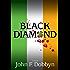 Black Diamond: A Novel (Knight and Devlin Thriller Book 3)