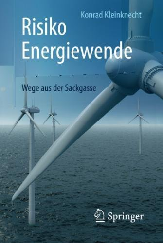 Risiko Energiewende: Wege aus der Sackgasse