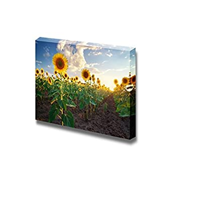 Beautiful Composition, Quality Creation, Field of Sunflowers Under Blue Sunny Sky Wall Decor