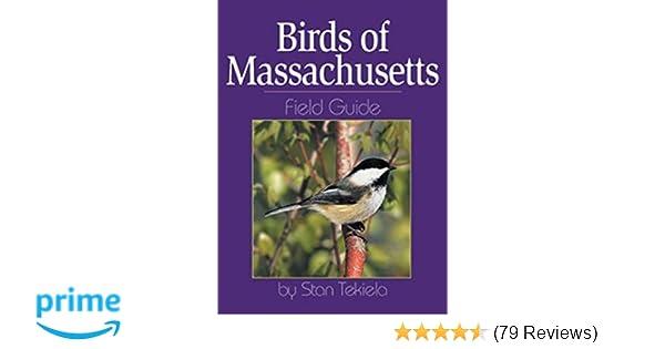 Birds of massachusetts field guide by stan tekiela, paperback.