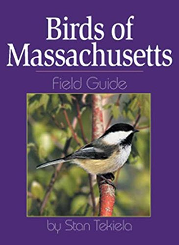 Massachusetts birds: a folding pocket guide to familiar species (a.