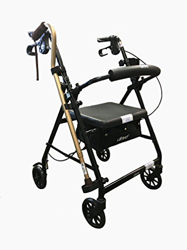 - Foldable 4-wheel Rollator with Seat, 3-piece Cane Holder, and Cup Holder (Black)
