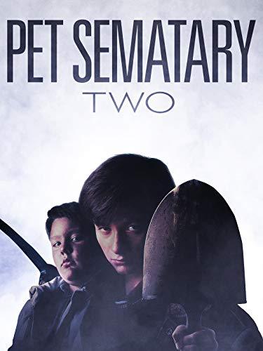 DVD : Pet Sematary II