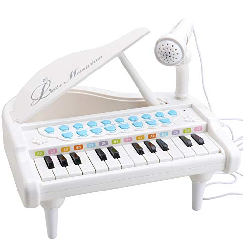 Amy&Benton Toy Piano for Baby & Toddler, Piano Keyboard Toy for Girls 1 2 3 4...