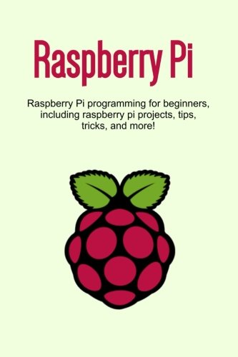 Raspberry Pi programming beginners including product image