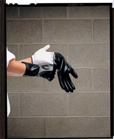Glove Liner, White, Regular, PK10 by Berkshire