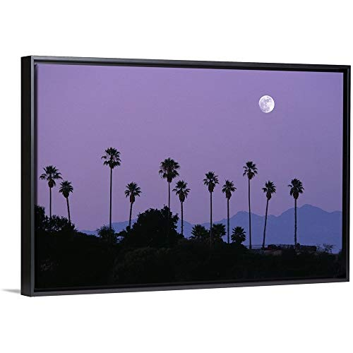 Floating Frame Premium Canvas with Black Frame Wall Art Print Entitled Moon Over Palm Trees at Dusk, Hollywood, Los Angeles, California, USA 30
