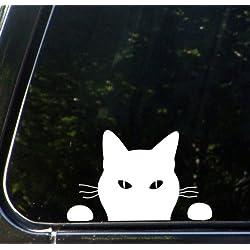 """White Cat """"Soon..."""" - Car Vinyl Decal Sticker - (7.25""""w x 4.5""""h) Copyright Yadda-Yadda Design Co."""