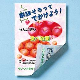 【まとめ 10セット】 サンワサプライ インクジェット用両面印刷紙厚手 JP-ERV5NA4 B07KNTRDJL