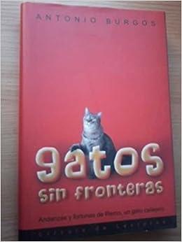 Gatos sin fronteras: andanzas y fortunas de Remo, un gato callejero: Antonio Burgos: 9788467212709: Amazon.com: Books
