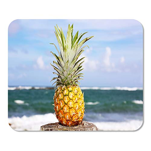 (Suike Mousepad Computer Notepad Office Green Plantation Pineapple Oceanfront Tropical Island Yellow Rum Beach Home School Game Player Computer Worker 9.5x7.9 Inch)