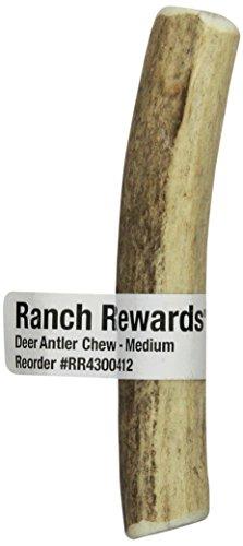 Ranch Rewards Antler Chews Dog Treat, Medium, Deer