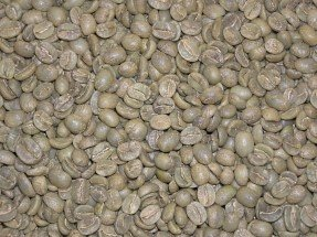 Mexican Chiapas Green Coffee Beans - 5lbs