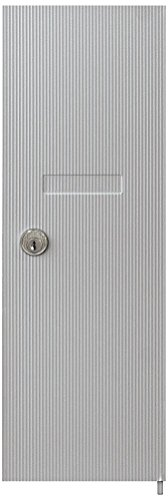 Salsbury Industries 3551ALM Replacement Door and Lock for Vertical Mailbox with Keys, Aluminum