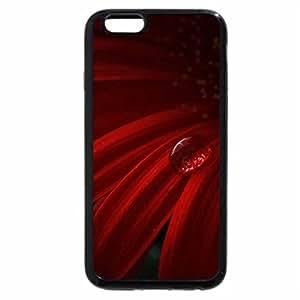 iPhone 6S Plus Case, iPhone 6 Plus Case, Tear flower