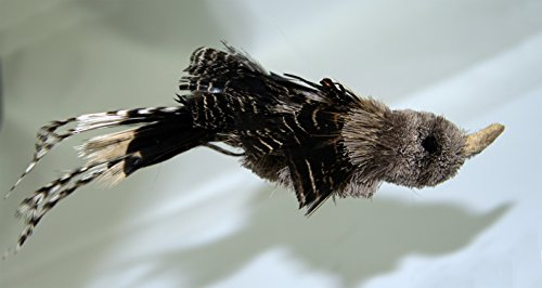 Wood Wildcats (Gila Woodpecker Bird Refill/Attachment- Fits Wildcat, Da Bird and Cat Catcher Poles and Wands)