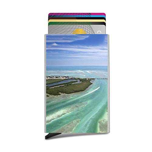 Florida Keys Style Anti Magnetic-Aluminum Alloy,Automatic Pop-Up Bank Card Storage - Cypress Hatteras Green