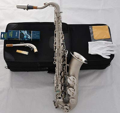 Used, FidgetFidget Professional Satin Nickel C Melody Saxophone for sale  Delivered anywhere in USA