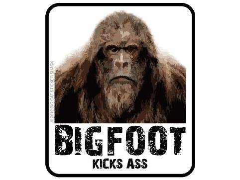 Bigfoot Kicks A** (All of our stickers and decals can be made Yeti cup size to at least back glass vehicle size , just message us and we will make you a listing on Amazon of what you want.)