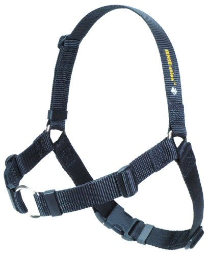 SENSE-ation No-Pull Dog Harness – Medium/Large (Wide) Black, My Pet Supplies