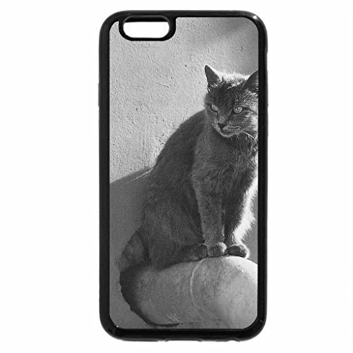 iPhone 6S Case, iPhone 6 Case (Black & White) - A cat on the pipe