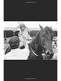 Image result for SEATTLE SLEW'S SON: SWALE""