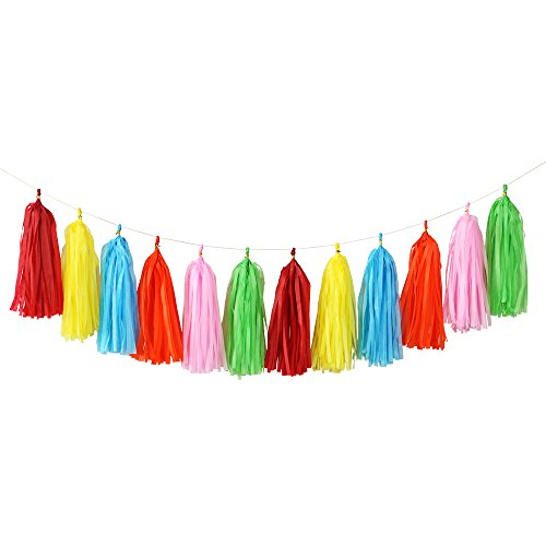 Multi Bright Color Tassels Lime Green Orange Turquoise Pink RED and Yellow]()