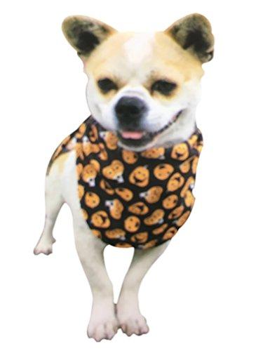 Small Dog Bandana Scarf for Halloween Pumpkin Jack-O-Lantern