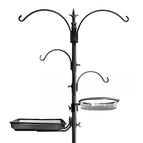 Types Of Backyard Birds (Ashman Premium Bird Feeding Station Kit, 22