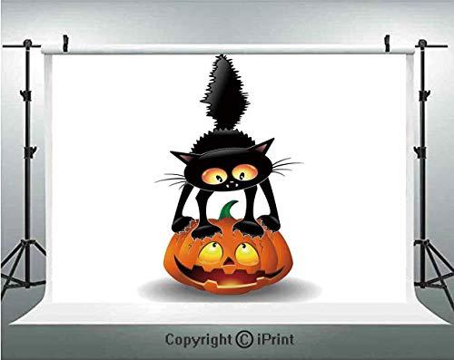 Halloween Decorations Photography Backdrops Black Cat on Pumpkin Spooky Cartoon Characters Halloween Humor Art,Birthday Party Background Customized Microfiber Photo Studio Props,10x6.5ft,Orange Black -