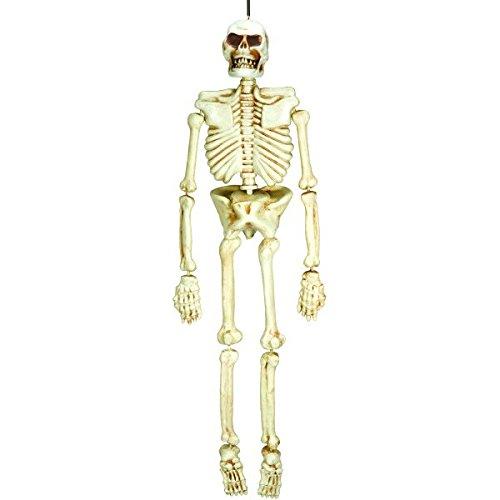 AMSCAN Hanging Plastic Skeleton, Halloween Props, 5' H -