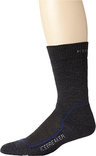 Planet Silk (Icebreaker Men's Hike+id Crew Socks (Jet/Planet/Black, Large))