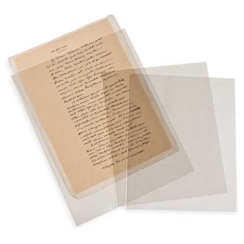 Gaylord Archival Polyester Photo & Document Envelopes (10-Pack)