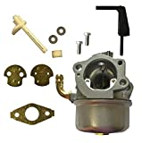 Auto Express New Replacement Carburetor and Gasket for Briggs & Stratton 698860 696981 791077 798653 697354 790290 Review