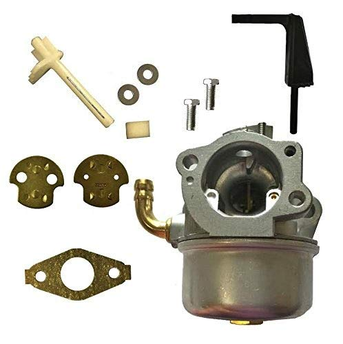 Auto Express New Replacement Carburetor and Gasket for Briggs & Stratton 698860 696981 791077 798653 697354 790290
