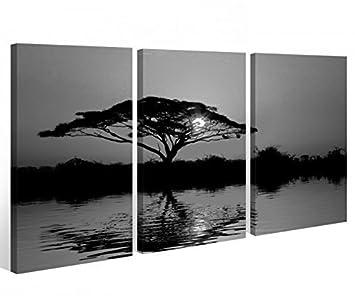 arbre noir blanc paysage soleil photo afrique tableau mural 9a444 bois
