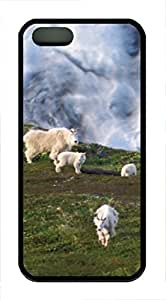 iPhone 5 5S Case A Group Of Goats TPU Custom iPhone 5 5S Case Cover Black