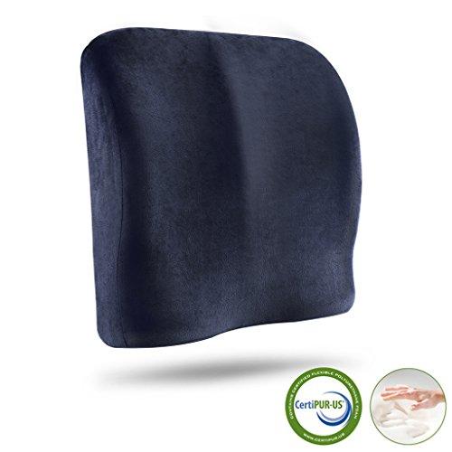 LANGRIA Lumbar Support Pillow Back Cushion, Dou...