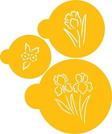 Amazon designer stencils spring garden flowers stencil set designer stencils spring garden flowers stencil set mightylinksfo