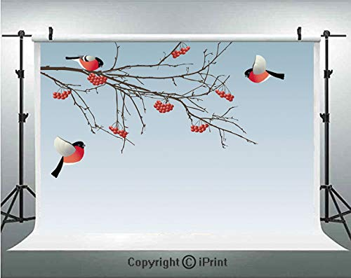 Rowan Photography Backdrops Bullfinch Birds Flying and on Branches Winter Themed Graphic Design Decorative,Birthday Party Background Customized Microfiber Photo Studio Props,7x5ft,Light Blue Coral - Blue Coral Zoo Light