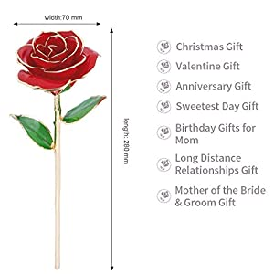 YINXN 24k Gold Rose, Red Gold Plated Rose 24k Gold Dipped Rose Everlasting Long Stem Real Rose with Exquisite Holder,Romantic Gift for Valentine's Day, Anniversary, Birthday and Mother's Day (Red) 5