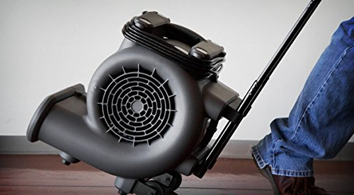 WORKSHOP WS1625AM Air Mover Fan & Carpet Dryer, High Velocity Blower Fan / Floor Dryer with Collapsible Handle & Wheels by WORKSHOP Wet/Dry Vacs (Image #3)